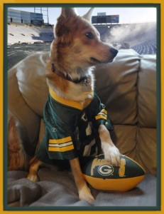 Lola is a Packer fan