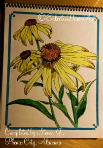 adult coloring book flowers, steven