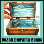 Dolphin diorama box by Eclectic Dawn Arts.