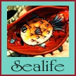 Shop for bowls featuring sealife images by Dawn Schmidt Ventimiglia on EclecticDawnArts.com